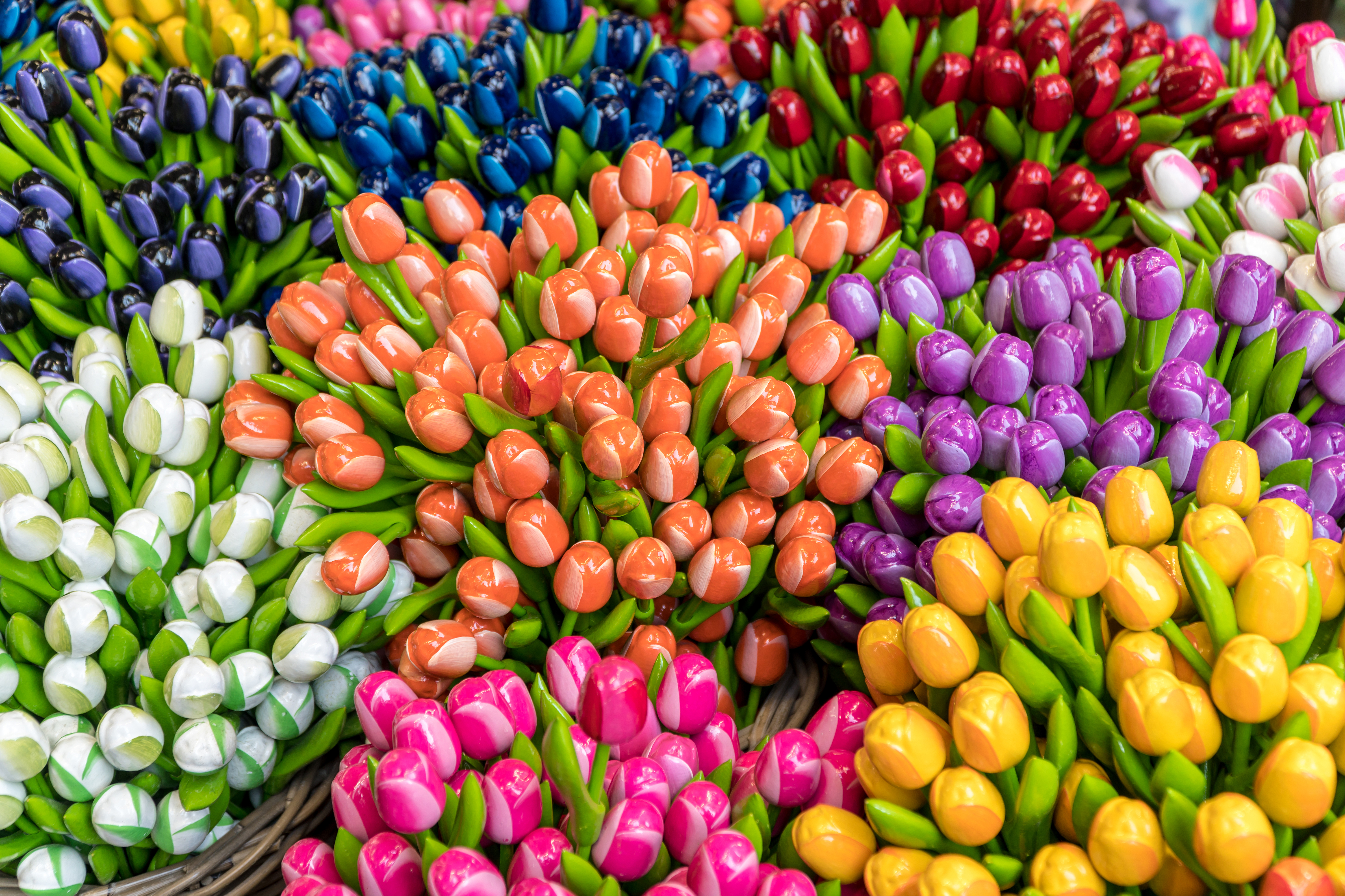 Group of colorful wooden tulips